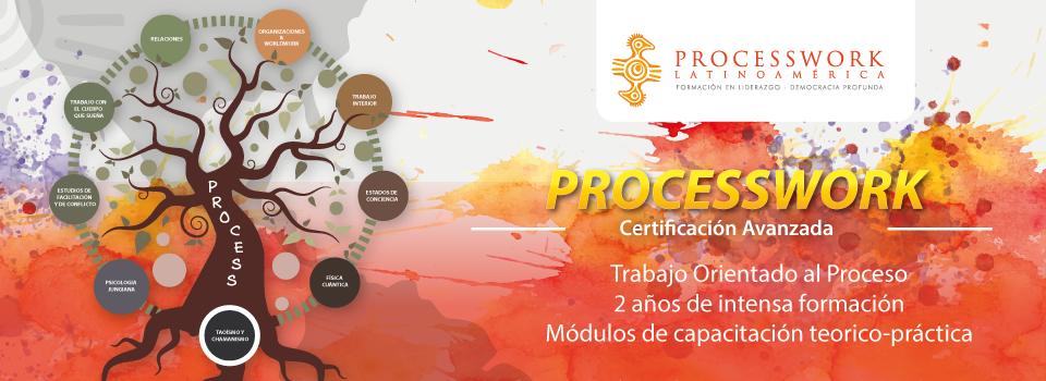 formacion-en-process-work-la